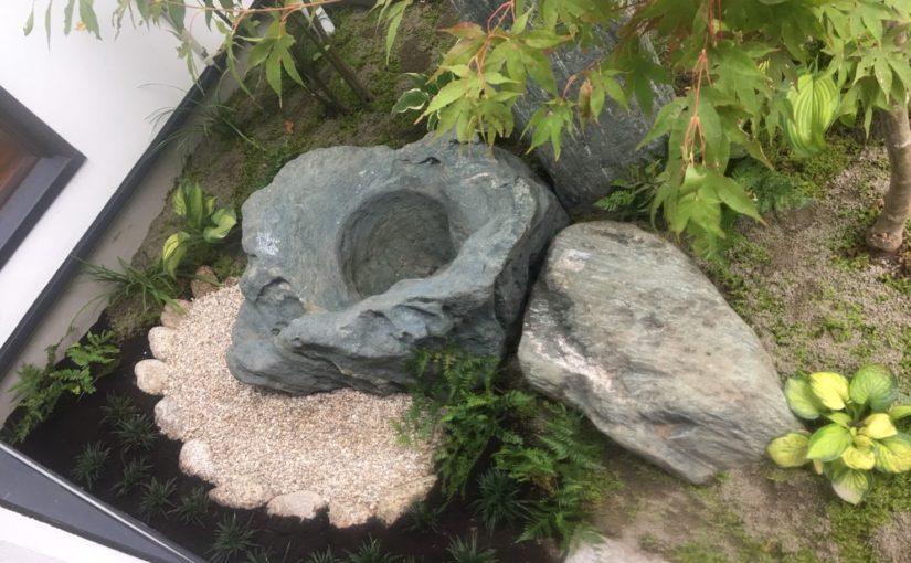 メダカの石と苔のある坪庭